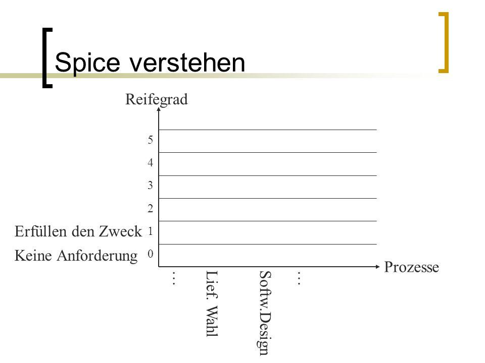 Spice verstehen Reifegrad Erfüllen den Zweck Keine Anforderung