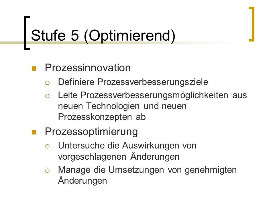Stufe 5 (Optimierend) Prozessinnovation Prozessoptimierung