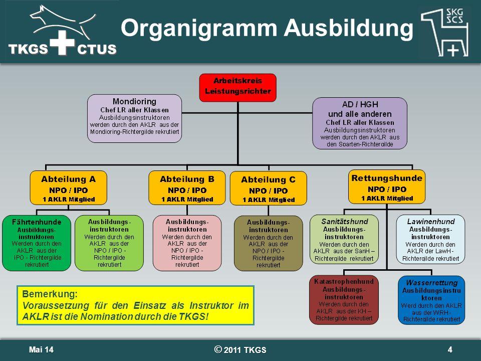 Organigramm Ausbildung