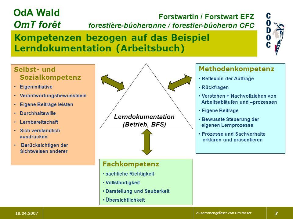 Kompetenzen bezogen auf das Beispiel Lerndokumentation (Arbeitsbuch)