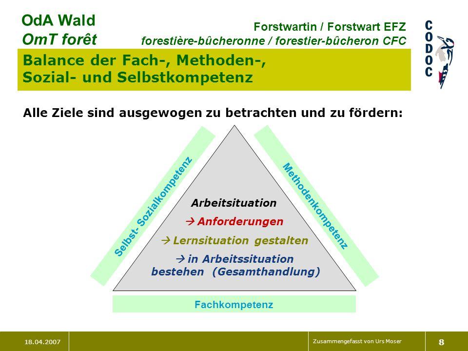 Balance der Fach-, Methoden-, Sozial- und Selbstkompetenz