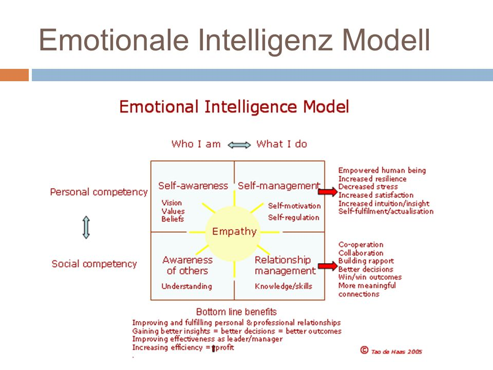 Emotionale Intelligenz Modell