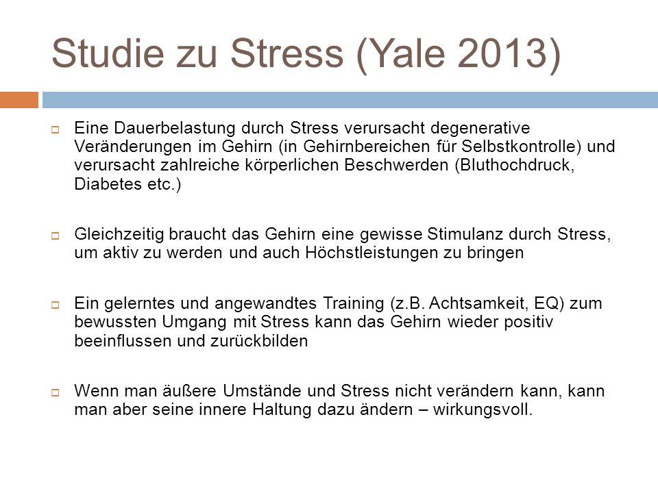 Studie zu Stress (Yale 2013)