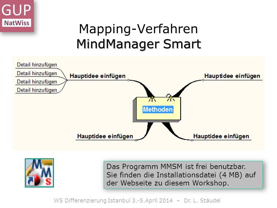 Mapping-Verfahren MindManager Smart