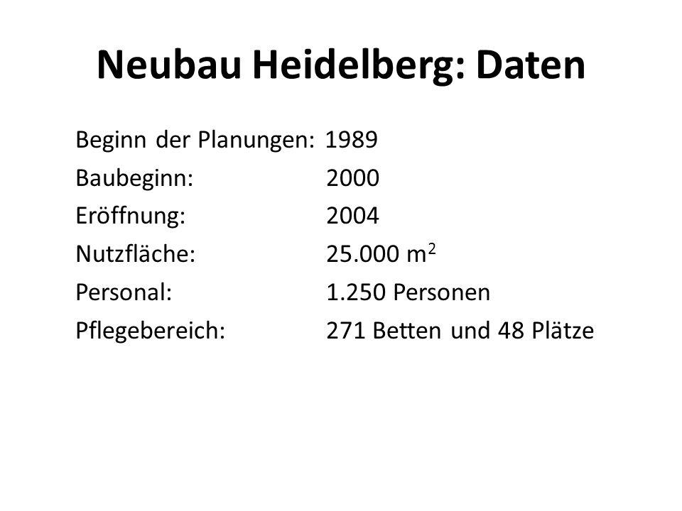 Neubau Heidelberg: Daten