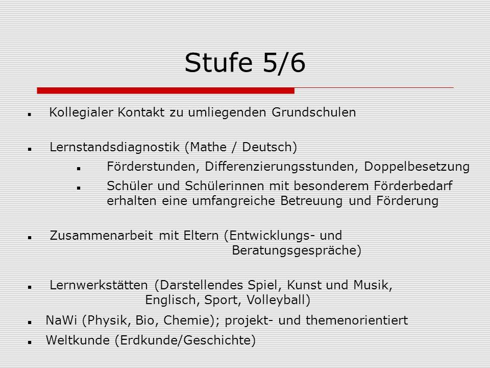 Stufe 5/6 Lernstandsdiagnostik (Mathe / Deutsch)
