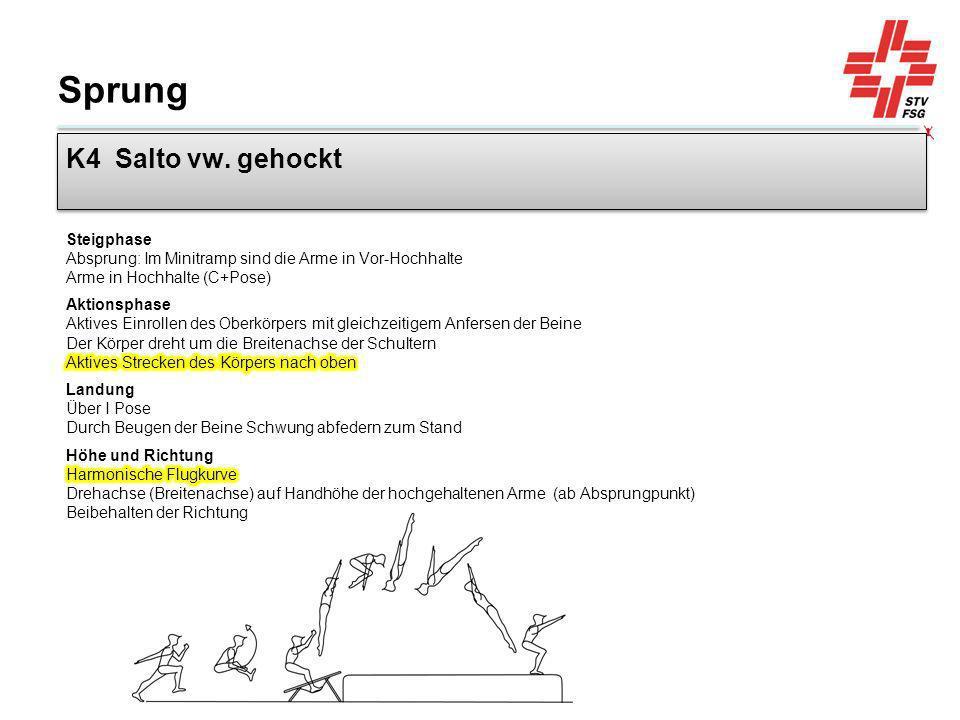 Sprung K4 Salto vw. gehockt