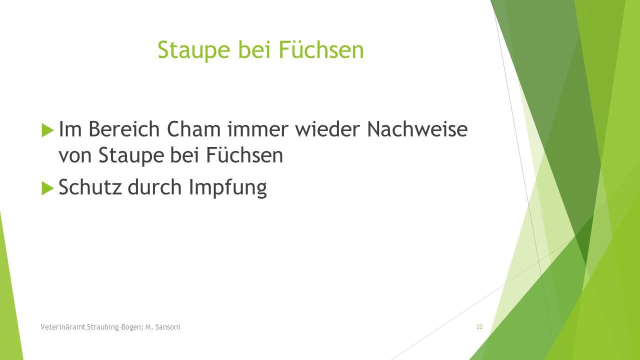 Staupe bei Füchsen Im Bereich Cham immer wieder Nachweise von Staupe bei Füchsen. Schutz durch Impfung.