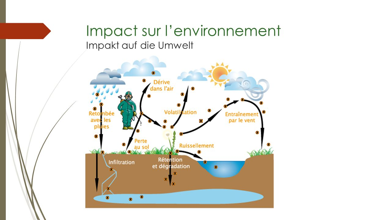 Impact sur l'environnement Impakt auf die Umwelt