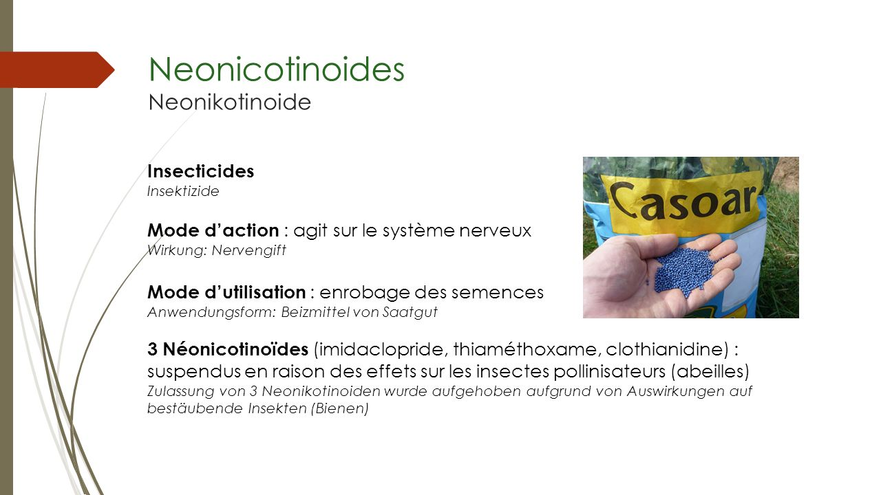 Neonicotinoides Neonikotinoide