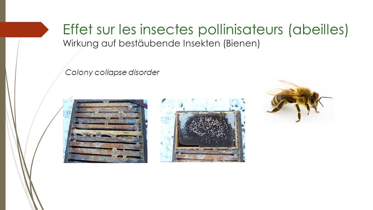 Effet sur les insectes pollinisateurs (abeilles) Wirkung auf bestäubende Insekten (Bienen)