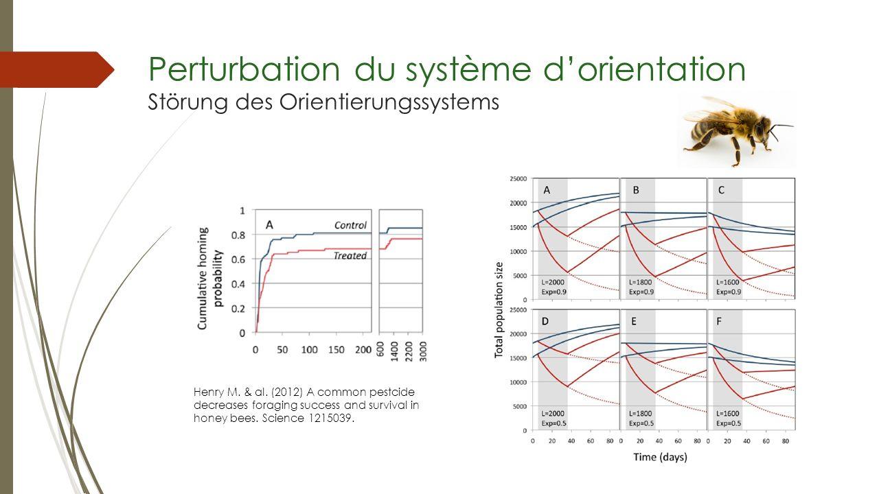 Perturbation du système d'orientation Störung des Orientierungssystems