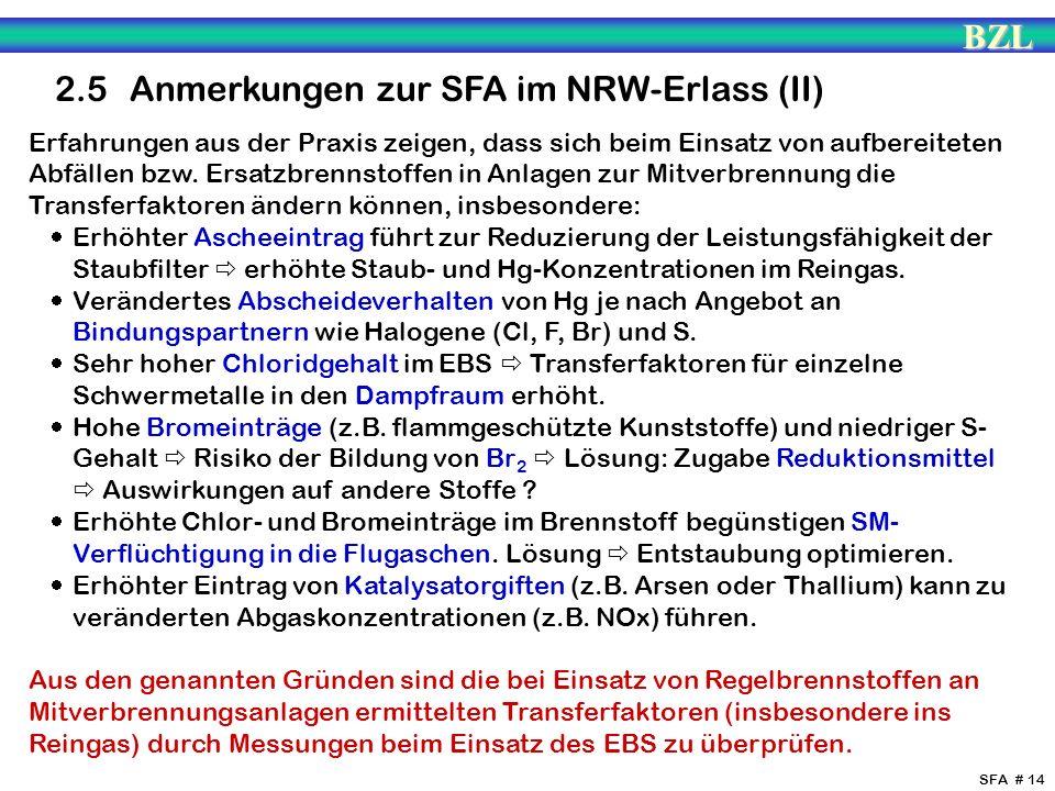 2.5 Anmerkungen zur SFA im NRW-Erlass (II)