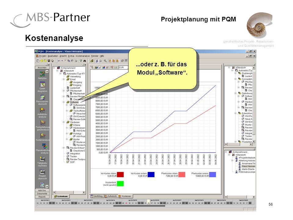 """Kostenanalyse ...oder z. B. für das Modul """"Software ."""