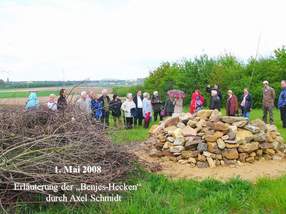 "Erläuterung der ""Benjes-Hecken durch Axel Schmidt"