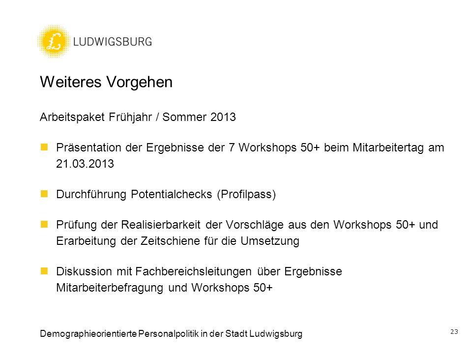 Weiteres Vorgehen Arbeitspaket Frühjahr / Sommer 2013
