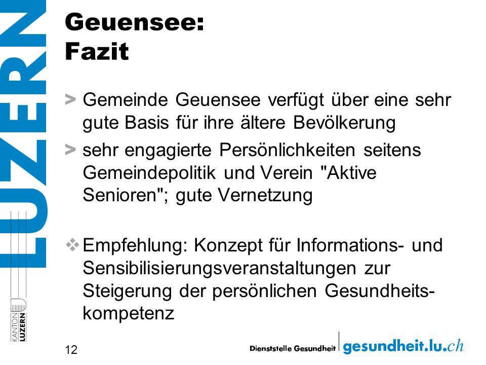 Geuensee: Fazit Gemeinde Geuensee verfügt über eine sehr gute Basis für ihre ältere Bevölkerung.