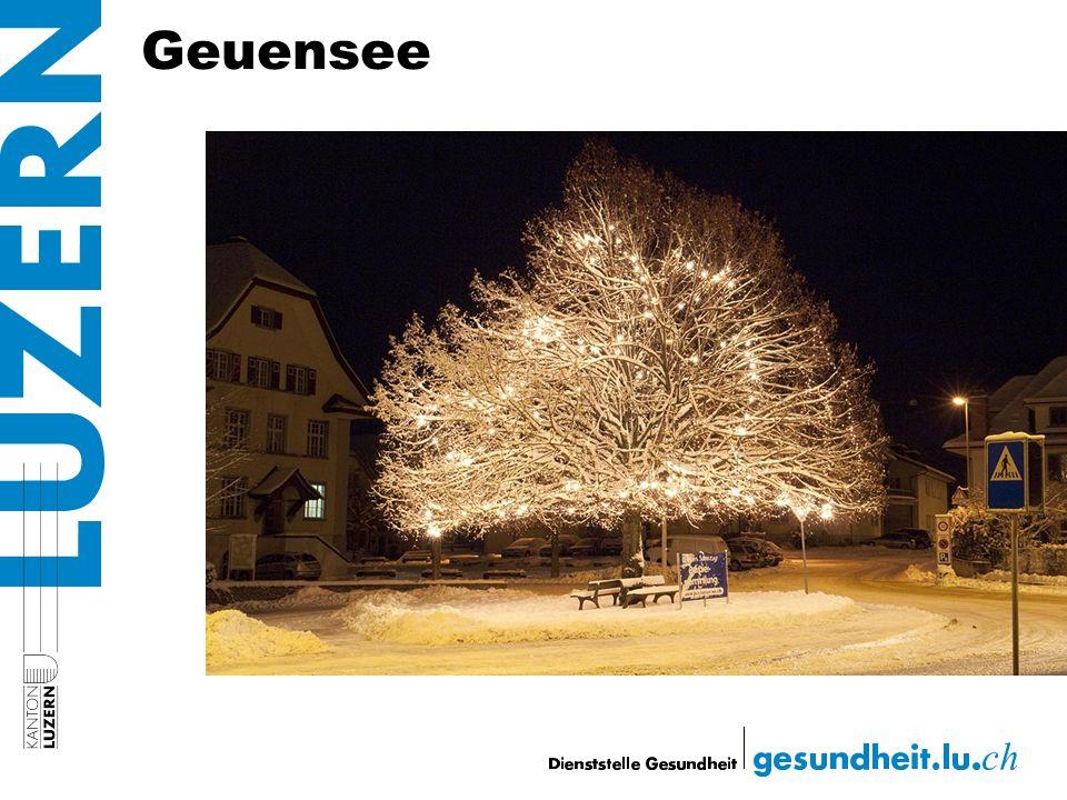 Geuensee
