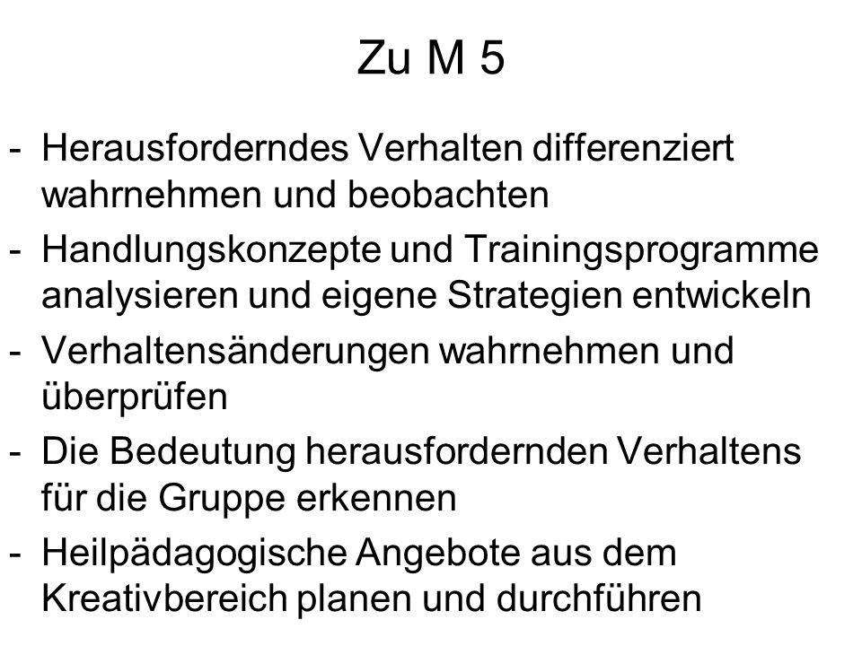 Zu M 5 Herausforderndes Verhalten differenziert wahrnehmen und beobachten.