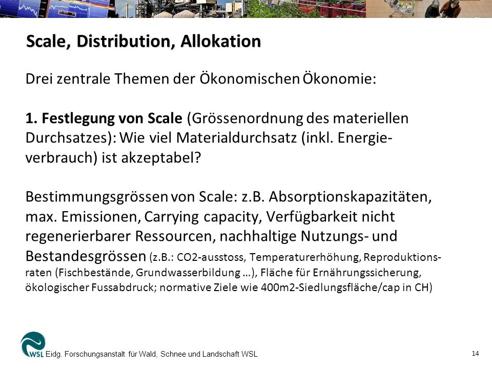 Scale, Distribution, Allokation