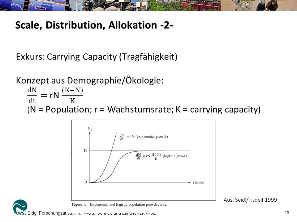 Scale, Distribution, Allokation -2-