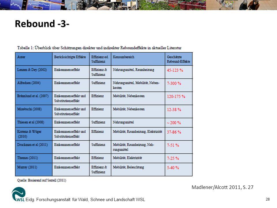 Rebound -3- Madlener/Alcott 2011, S. 27