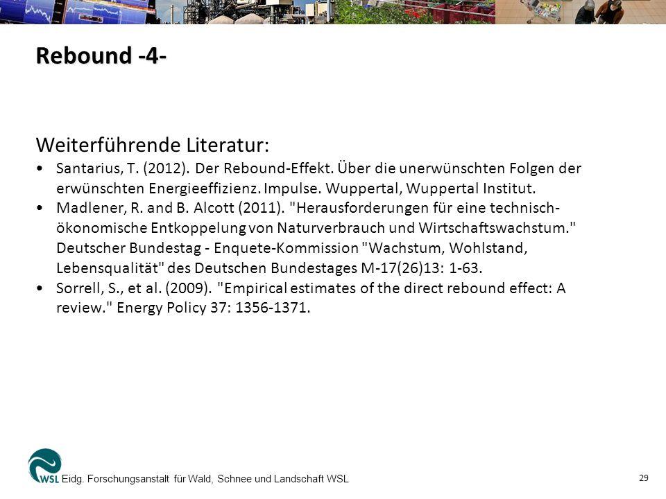 Rebound -4- Weiterführende Literatur: