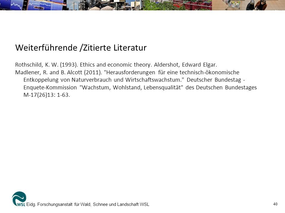 Weiterführende /Zitierte Literatur
