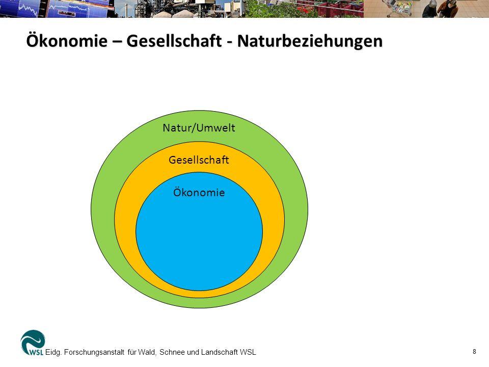 Ökonomie – Gesellschaft - Naturbeziehungen