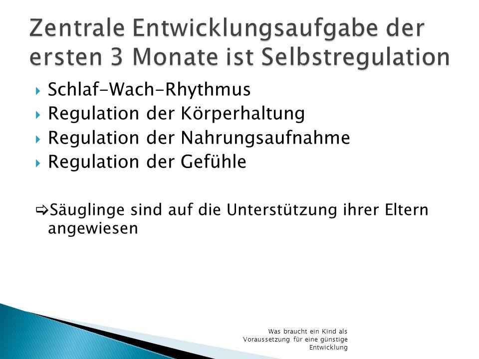 Zentrale Entwicklungsaufgabe der ersten 3 Monate ist Selbstregulation