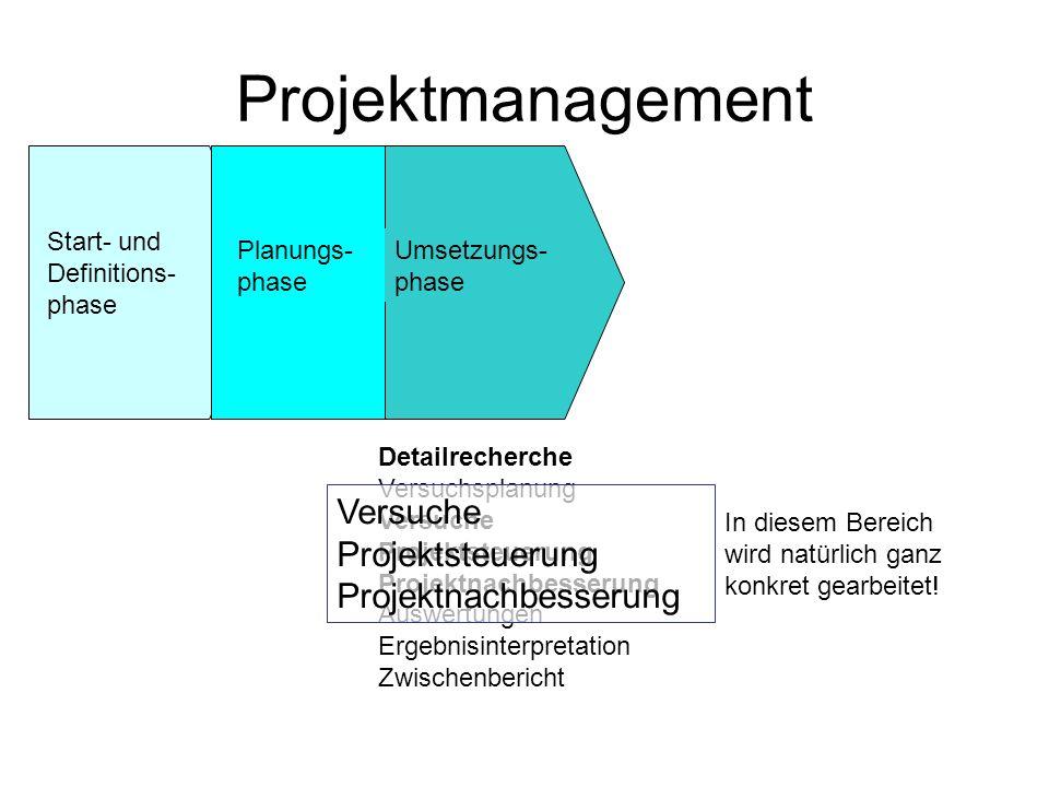 Projektmanagement Versuche Projektsteuerung Projektnachbesserung