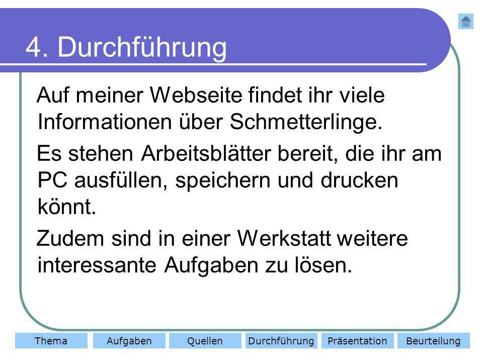 4. Durchführung Auf meiner Webseite findet ihr viele Informationen über Schmetterlinge.