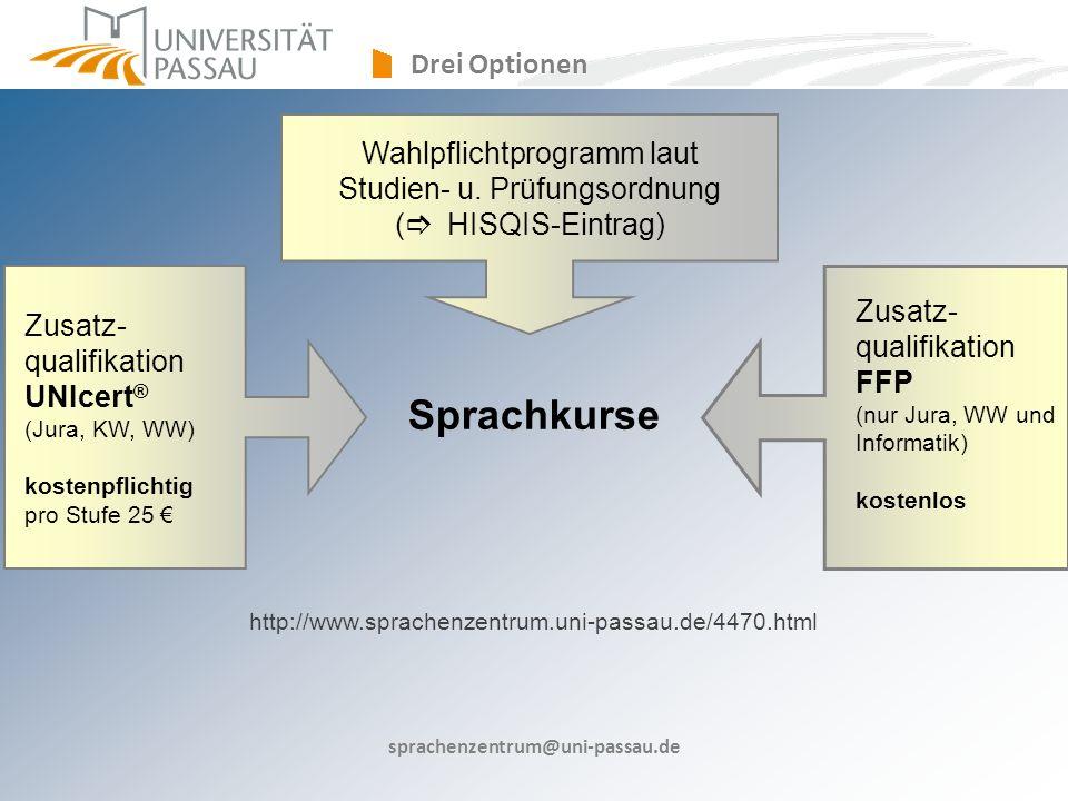 Sprachkurse Drei Optionen