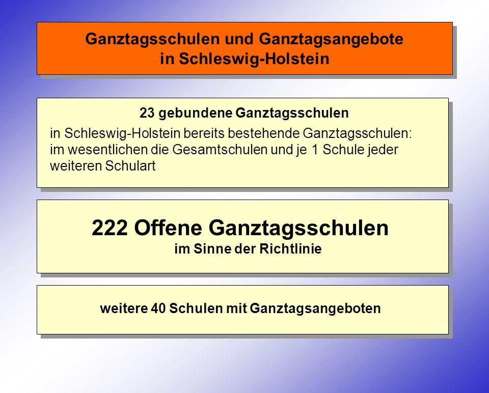Ganztagsschulen und Ganztagsangebote in Schleswig-Holstein