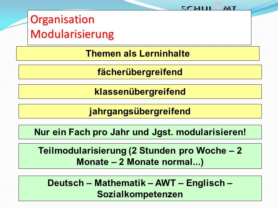 Organisation Modularisierung