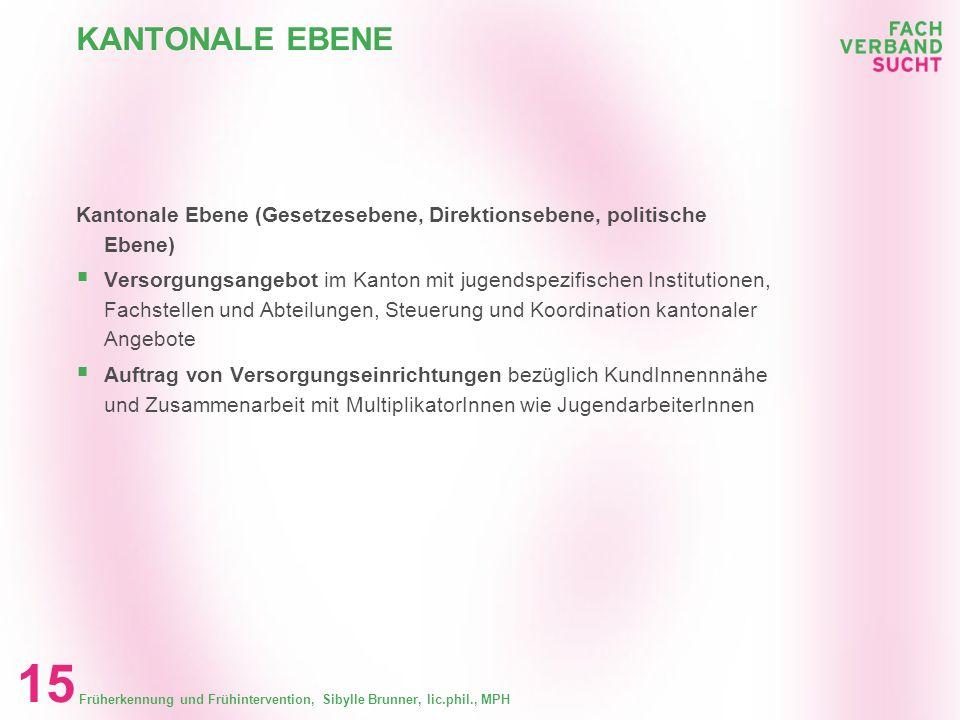 KANTONALE EBENE Kantonale Ebene (Gesetzesebene, Direktionsebene, politische Ebene)