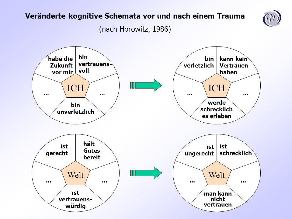 Veränderte kognitive Schemata vor und nach einem Trauma