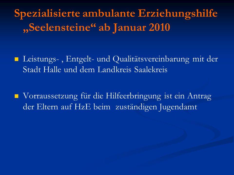 "Spezialisierte ambulante Erziehungshilfe ""Seelensteine ab Januar 2010"