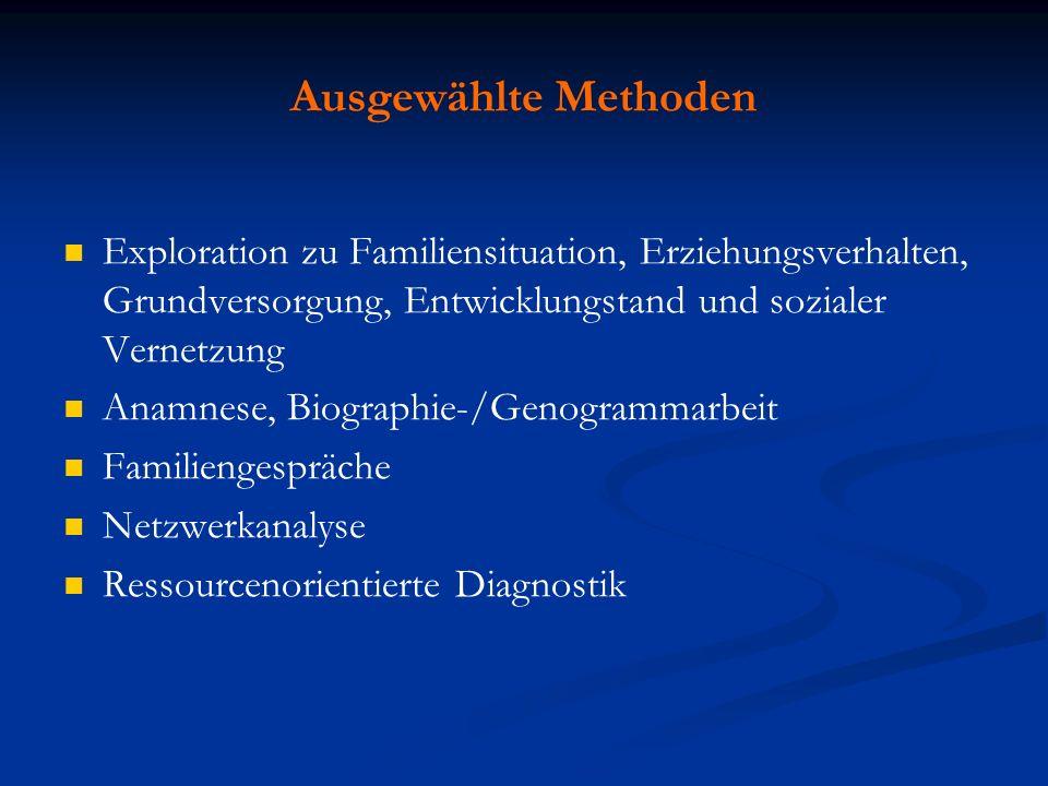 Ausgewählte Methoden Exploration zu Familiensituation, Erziehungsverhalten, Grundversorgung, Entwicklungstand und sozialer Vernetzung.