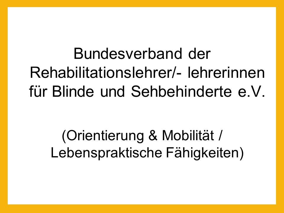 (Orientierung & Mobilität / Lebenspraktische Fähigkeiten)