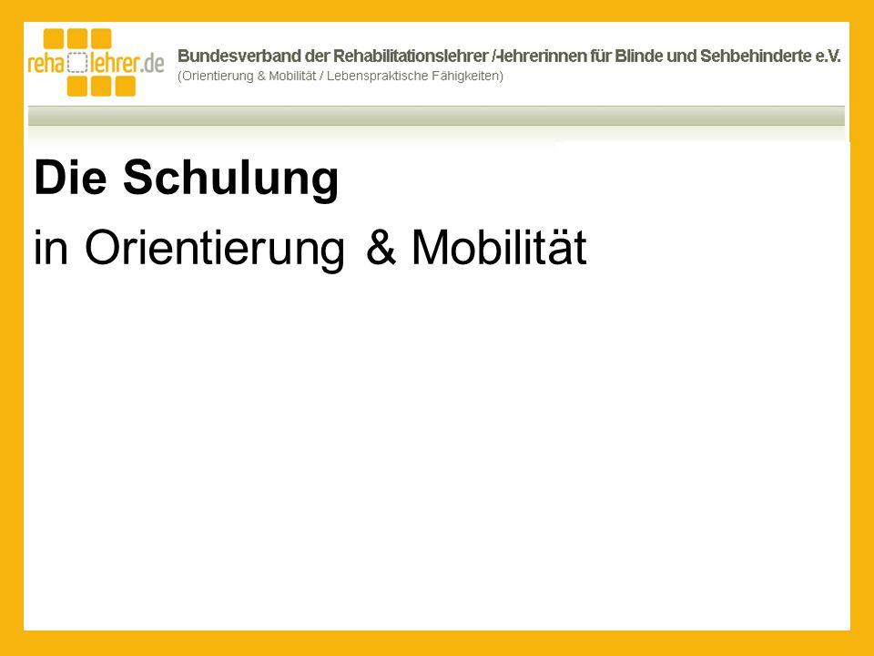 Die Schulung in Orientierung & Mobilität