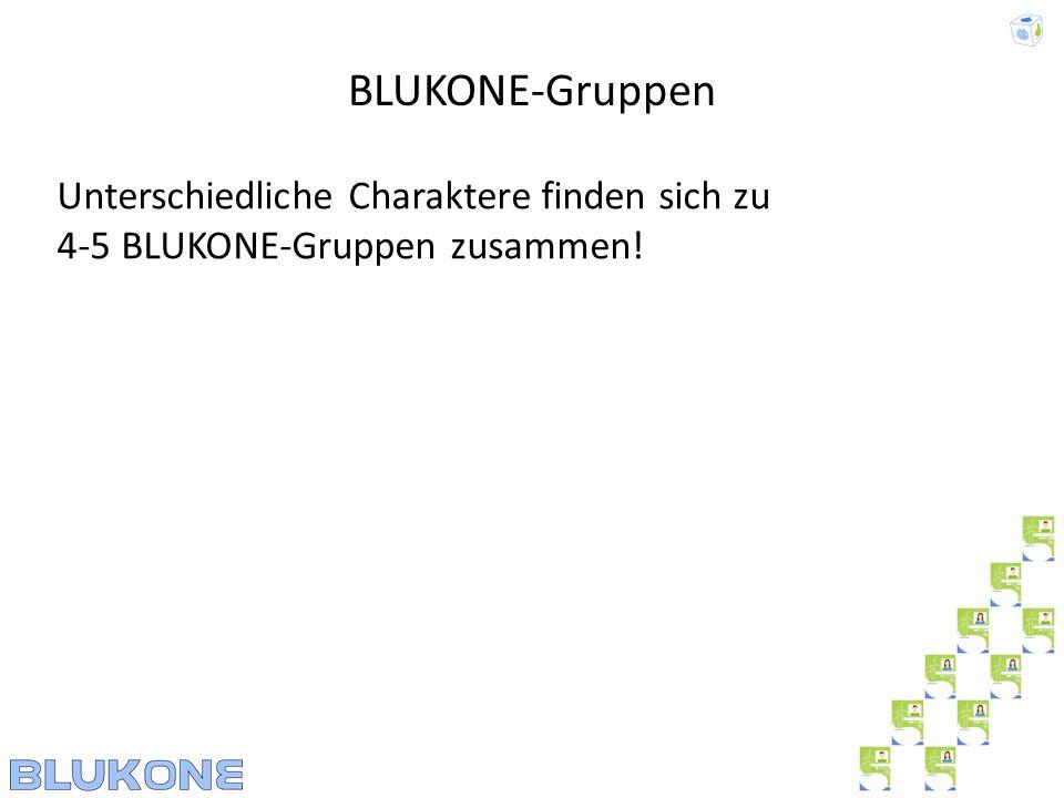 BLUKONE-Gruppen Unterschiedliche Charaktere finden sich zu 4-5 BLUKONE-Gruppen zusammen!