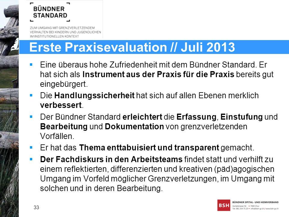 Erste Praxisevaluation // Juli 2013