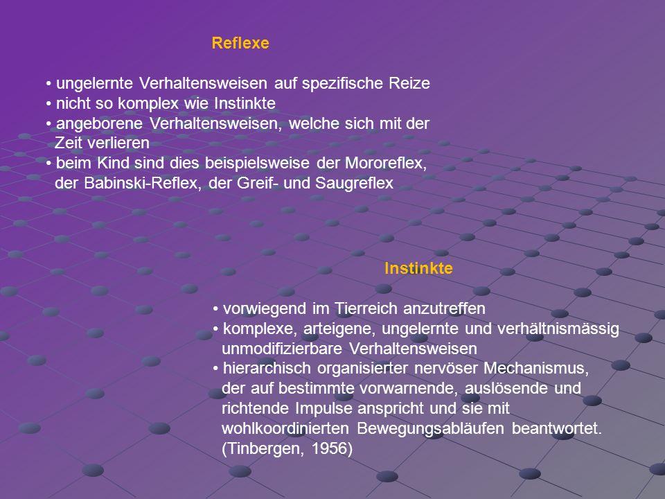 Reflexe • ungelernte Verhaltensweisen auf spezifische Reize. • nicht so komplex wie Instinkte. • angeborene Verhaltensweisen, welche sich mit der.