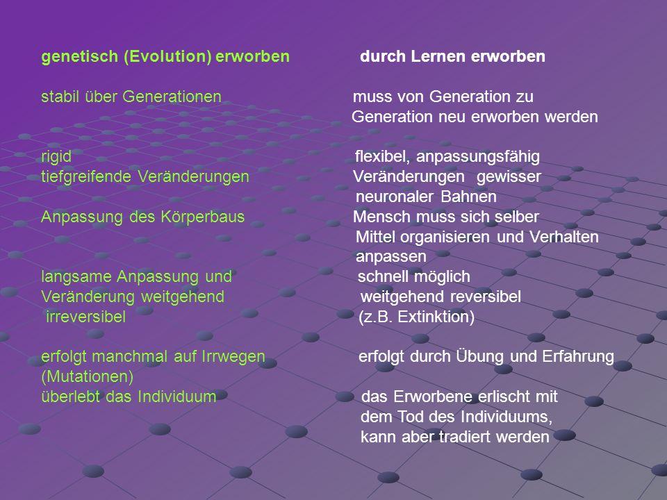 genetisch (Evolution) erworben durch Lernen erworben