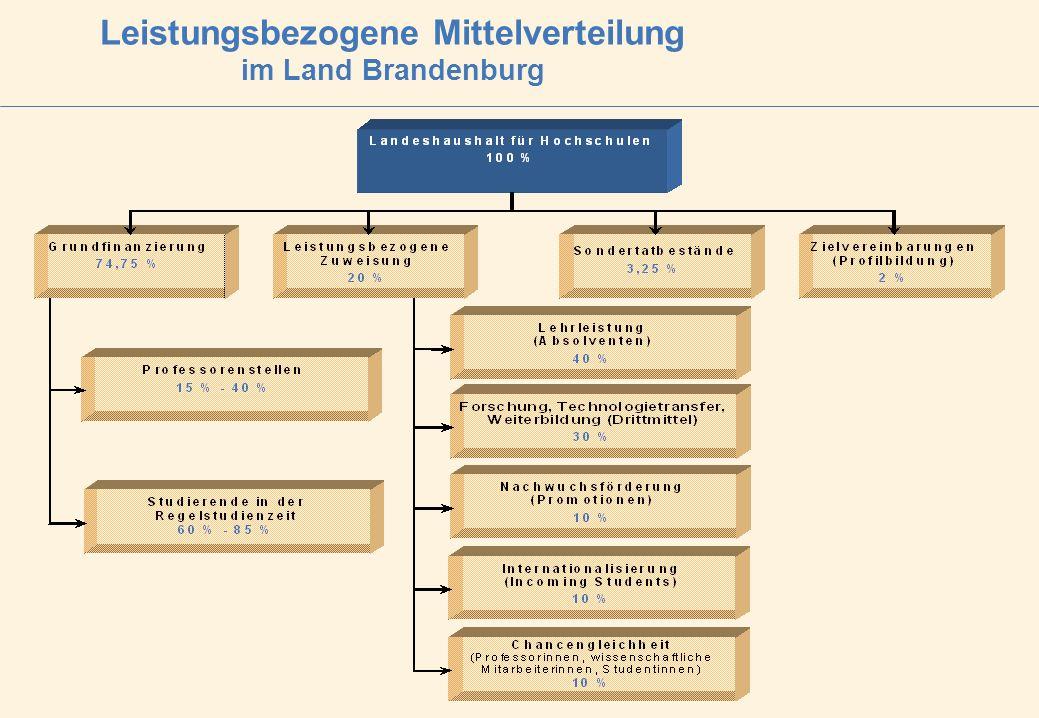 Leistungsbezogene Mittelverteilung im Land Brandenburg