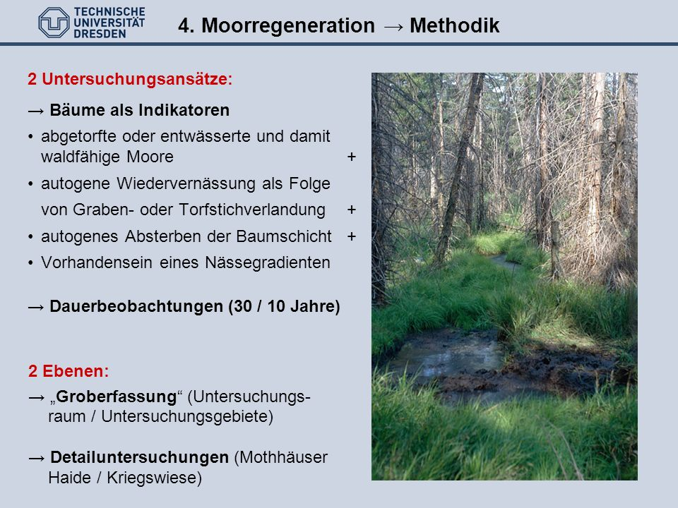 4. Moorregeneration → Methodik
