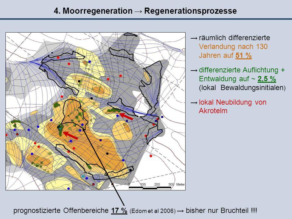 4. Moorregeneration → Regenerationsprozesse