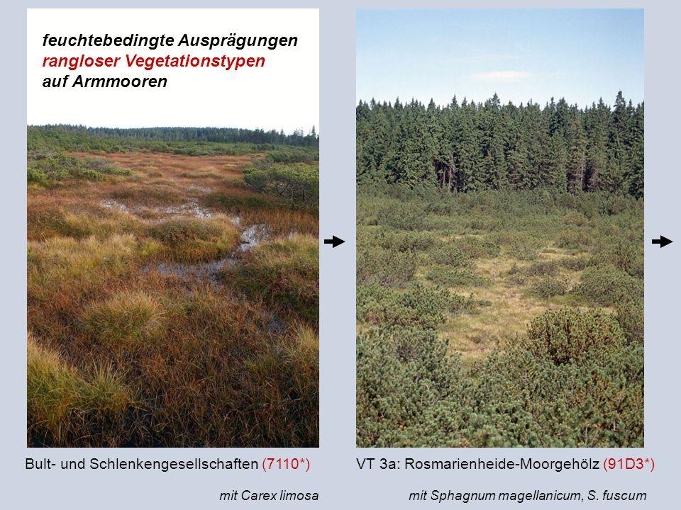 feuchtebedingte Ausprägungen rangloser Vegetationstypen auf Armmooren