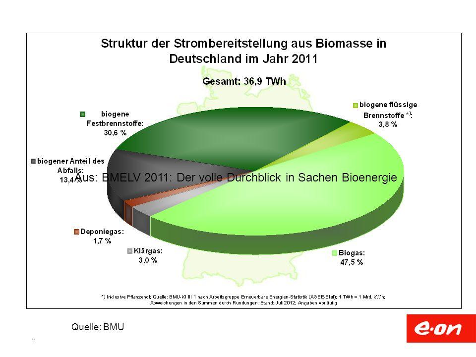 Aus: BMELV 2011: Der volle Durchblick in Sachen Bioenergie